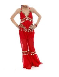Belly Dancer Halloween Costumes picture-1