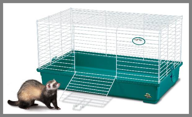 small ferret cage image