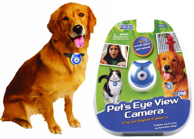 Wireless pet collar camera